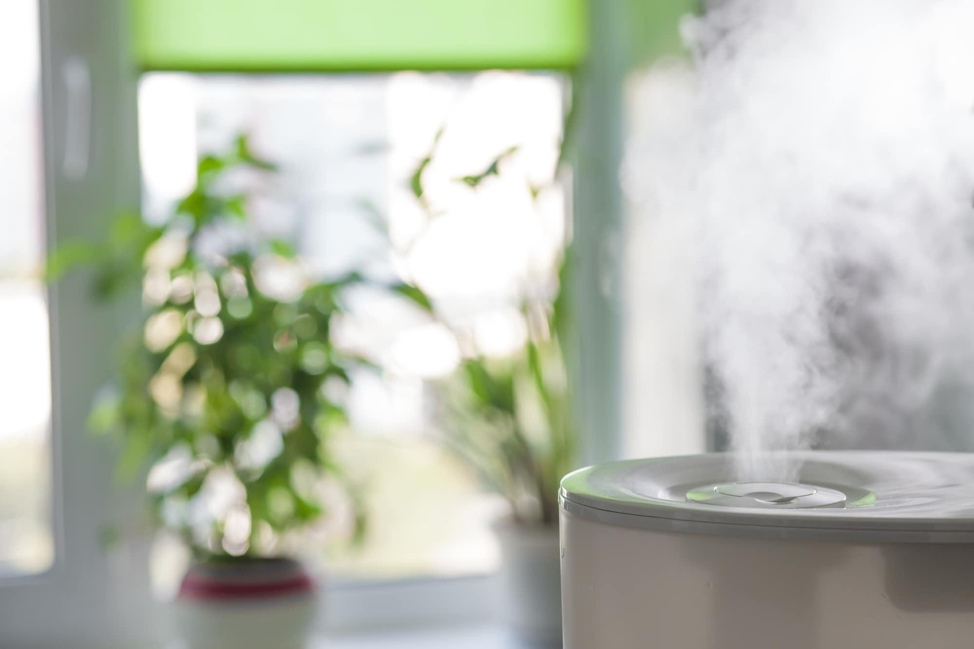 家電のプロが教える! 機能、コスト…自分にぴったりの加湿器の選び方とチェックポイント
